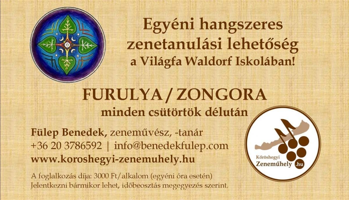 Waldorf Zeneórák hirdetés
